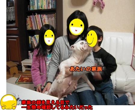 Bi★Biムーン22-12-30035