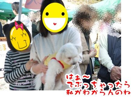 2012-4-14譲渡会032