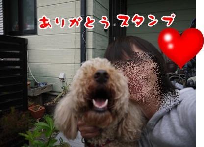 2012-5-17ちぃ坊スタンプ旅立ち033