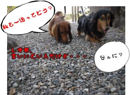 2012-5-17ちぃ坊スタンプ旅立ち057
