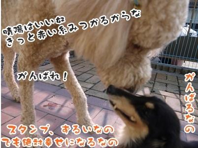 2012-5-17ちぃ坊スタンプ旅立ち127