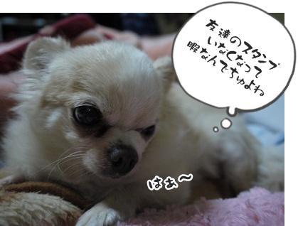 2012-6-21ちぃ坊046