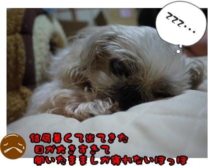 2012-06-29ぽっぽ001