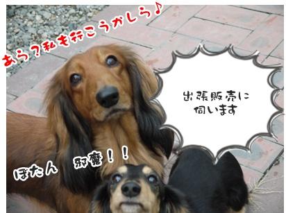 2012-01-10海027