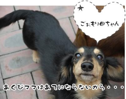 2012-01-10海024