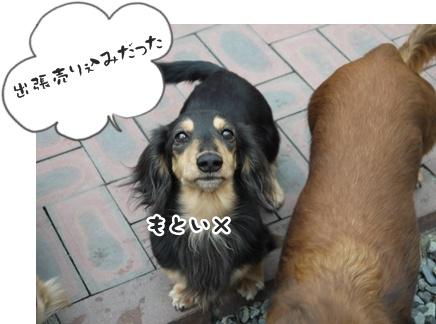2012-01-10海028