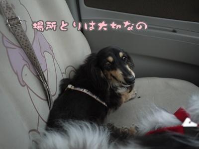 2012-07-01もっこ晴陽004