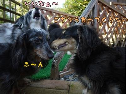 2012-7-7はるひ022