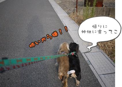 2012-8みんな094