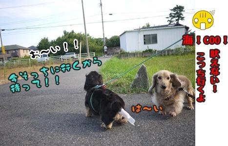 2012-8みんな091