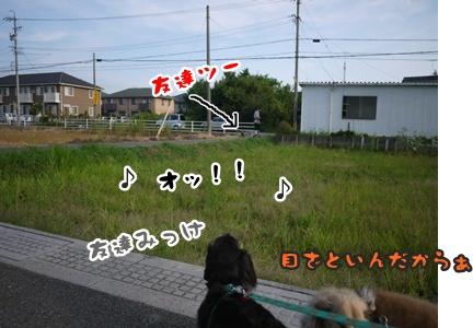 2012-8みんな090