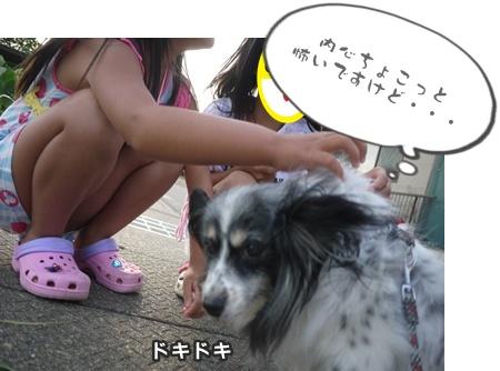 2012-8みんな059