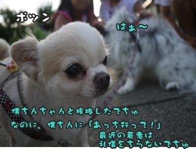 2012-8みんな063
