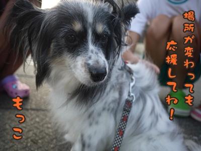 2012-8みんな061