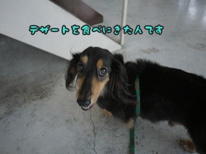 2012-8-26うめ004