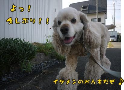 2012-8-23散歩049
