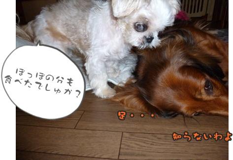 2012-9-24ぽっぽみんな048
