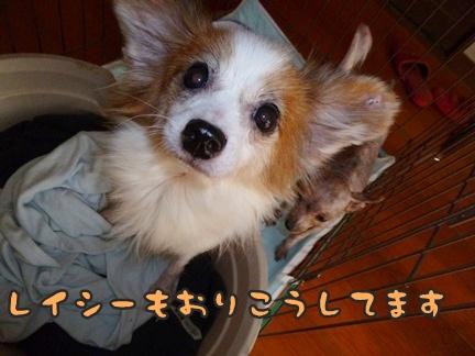 2012-10-20みんな035
