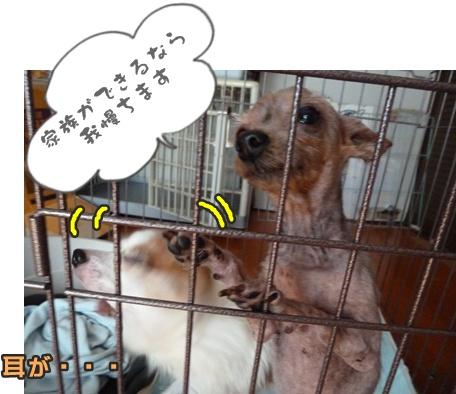 2012-10-20みんな032