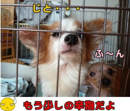 2012-10-20みんな030