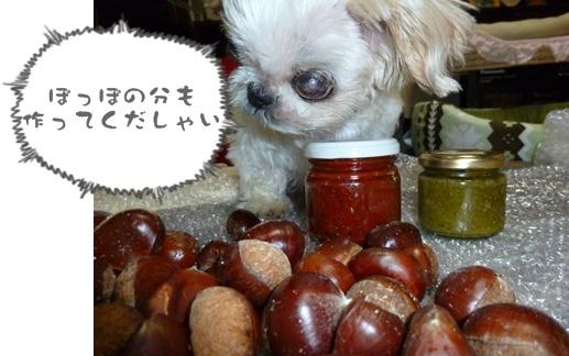 2012-10-20みんな096