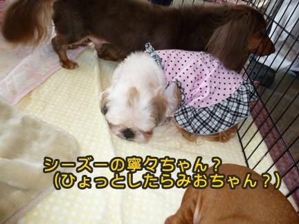 2012-10-20みんな069