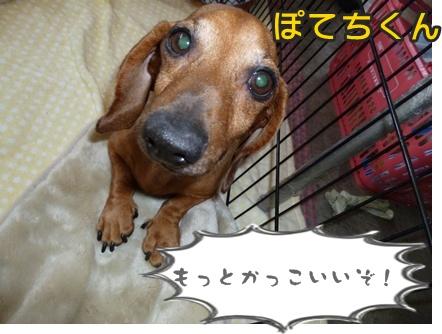 2012-10-20みんな068
