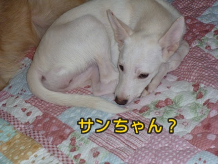 2012-10-20みんな062
