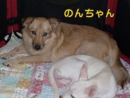 2012-10-20みんな061