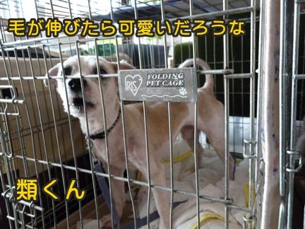 2012-10-20みんな066