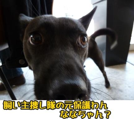 2012-10-20みんな078