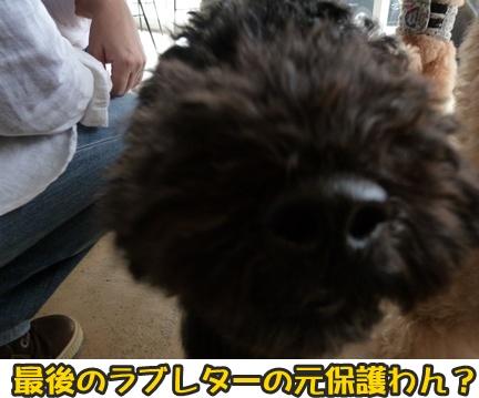 2012-10-20みんな083
