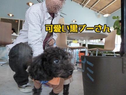 2012-10-20みんな059
