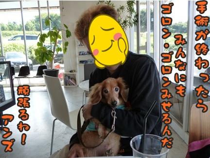 2012-10-20みんな072