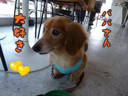2012-10-20みんな056