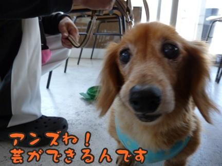 2012-10-20みんな055