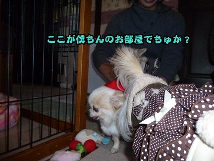 2012-12-1ちまきに007
