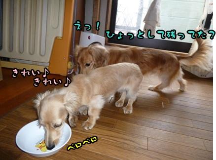 2012-12-17天使041