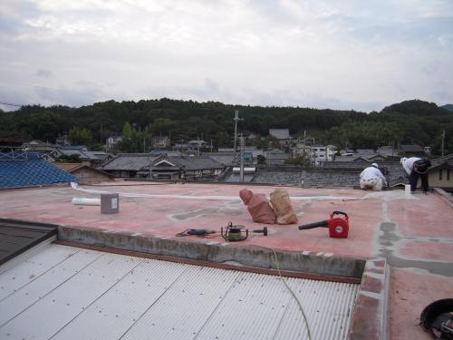 20101021-2.jpg