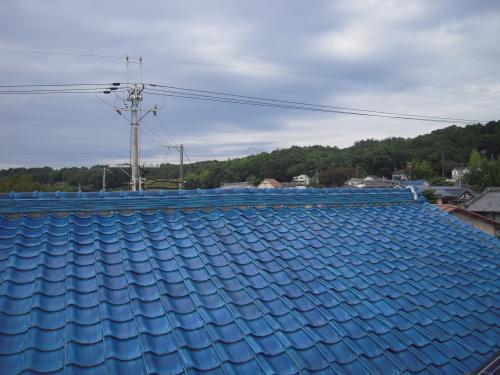 20101030-14.jpg
