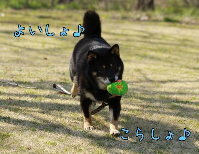 BsfDilZl7ihqAri.jpg