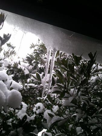 2012-01-29 16.12.46 (カスタム)