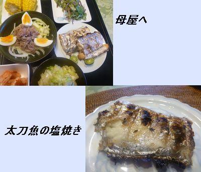 母屋と太刀魚