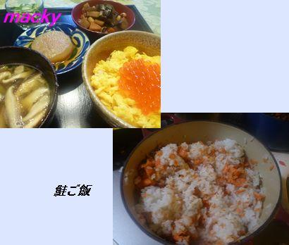 鮭ご飯定食