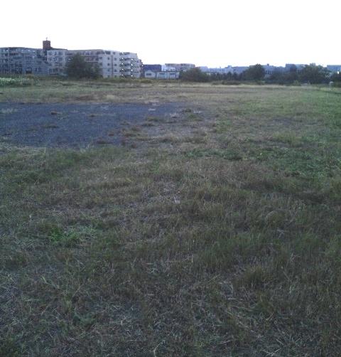 201110-29-6.jpg