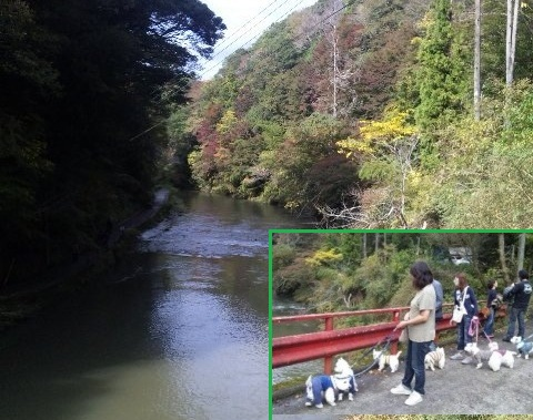 201111-20-2-1.jpg