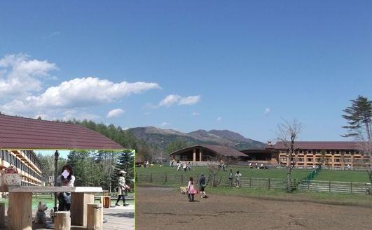 20125-5-13.jpg