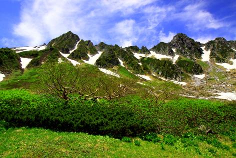 宝剣岳を若葉彩る