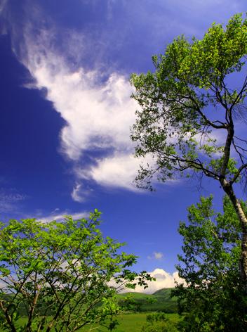 雲わく八島ヶ原
