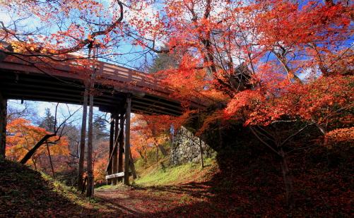 桜雲橋を彩るモミジ